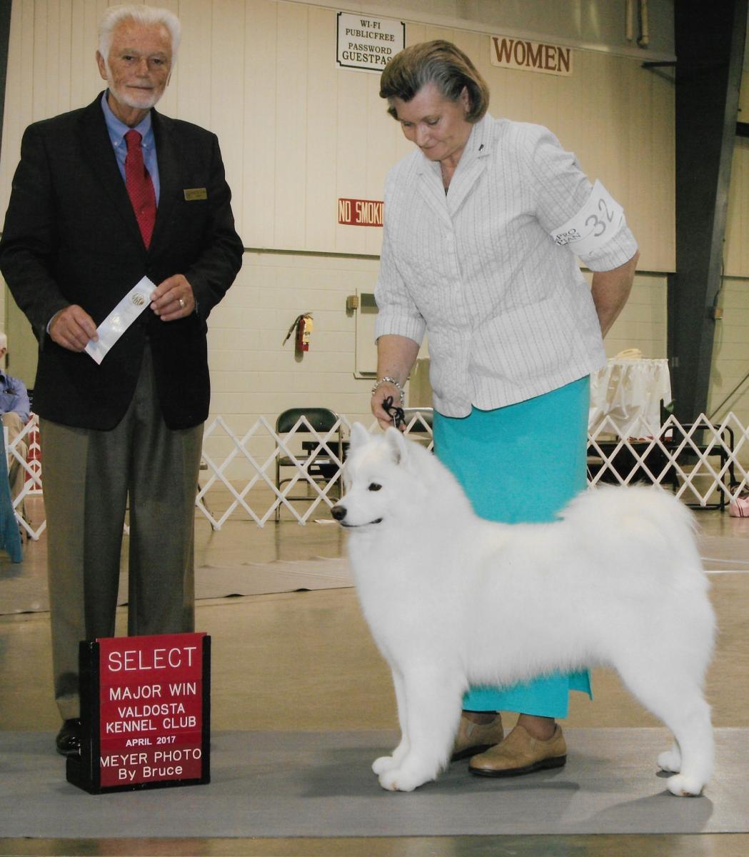 Select Major Win Valdosta Kennel Club